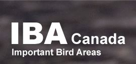 important_bird_areas_of_canada