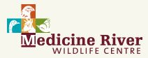 medicine river wildlife centre