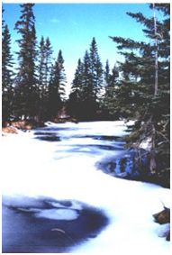 butcher-creek-in-winter