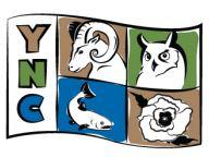 YNC Logo