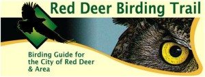 city-of-red-deer-bird-trail-logo